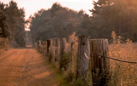 Картинка дорога, природа, забор