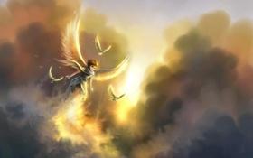 Картинка девушка, облака, полет, птицы, арт, в небе, анегел