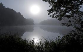 Картинка небо, трава, свет, деревья, ночь, отражение, река