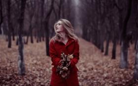 Обои осень, лес, девушка, настроение