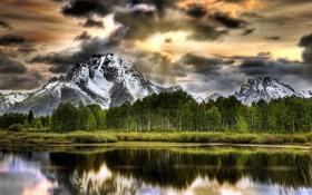 Обои деревья, горы, природа, озеро, Grand Teton National Park, Oxbow Bend Lake