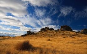 Картинка поле, небо, пейзаж, природа, камни, холмы, растения