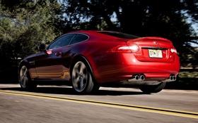 Обои красный, купе, Jaguar, XKR, Ягуар, суперкар, вид сзади