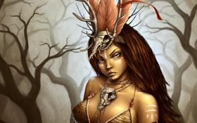Картинка лес, девушка, перья, арт, черепа, дикарка