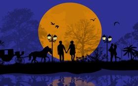 Обои деревья, любовь, птицы, ночь, романтика, лошадь, пара