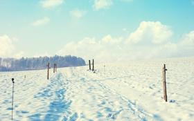 Обои зима, пейзаж, природа