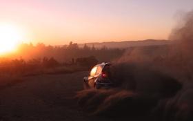 Обои Ford, Закат, Скорость, WRC, Спорт, Вид сзади, Fiesta