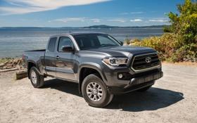 Картинка Toyota, пикап, тойота, SR5, Tacoma, 2015, такома