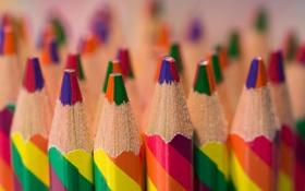 Обои макро, цветные, карандаши