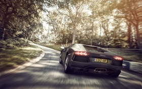 Обои Lamborghini, ламборджини, rear, LP700-4, Aventador, авентадор