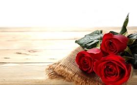 Картинка розы, бутоны, салфетка