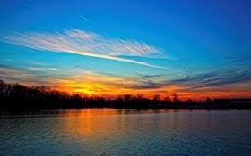 Обои закат, лес, небо, природа, Балтимор, пейзаж