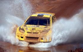 Обои Вода, Авто, Желтый, Гонка, Грязь, Брызги, Rally