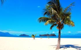 Обои море, небо, горы, тропики, пальма, океан, остров