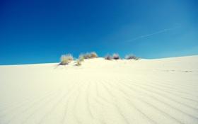 Картинка 2560x1600, пейзаж, nature, трава, небо, light, sand