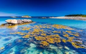 Обои море, небо, синий, камень, горизонт, риф, коралл