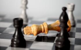 Обои макро, шахматы, фигуры