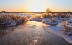 Картинка лед, зима, деревья, природа, река, фото
