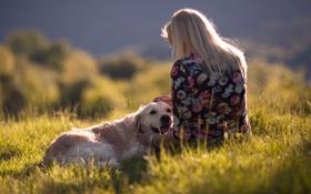 Картинка девушка, закат, настроение, собака