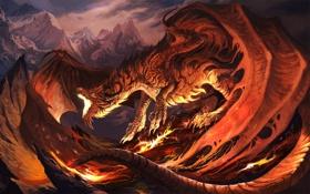 Обои красный, дракон, огненый, Fireplay
