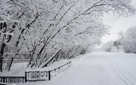 Картинка зима, снег, город