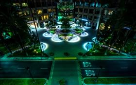 Картинка ночь, дизайн, огни, пальмы, дома, красота, фонари