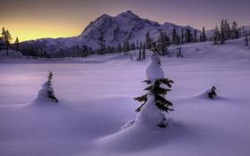 Картинка зима, снег, горы, природа, ёлки