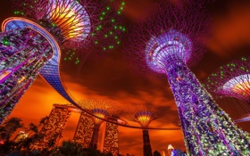 Обои Singapore, Gardens By The Bay, Cloud City