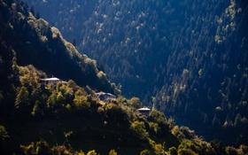 Картинка лес, деревья, пейзаж, горы, природа, обои, дома