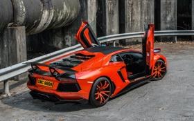 Обои крыша, авто, спорт, тюнинг, Lamborghini, диски, Cars
