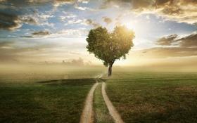 Картинка сердце, пейзаж, природа, дорога