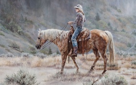 Обои лошадь, склон, всадник