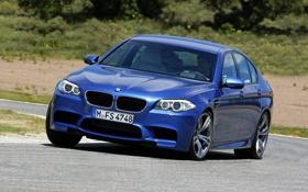 Картинка Дорога, Синий, BMW, Машина, Бумер, БМВ, Седан