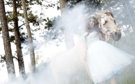 Обои девушка, конь, туман