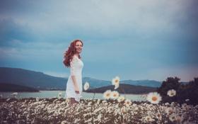 Обои лето, радость, рыжеволосая девушка, ромашковое поле