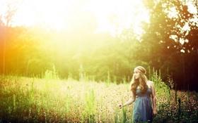Картинка лето, свет, природа, фон, девочка