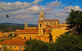 Обои облака, деревья, самолет, голубь, дома, Испания, Girona