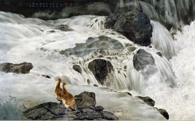 Обои птицы, река, камни, рисунок, водопад, арт, иероглифы