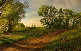 Обои дорога, поле, лето, деревья
