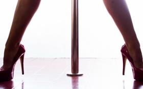 Картинка фон, ноги, туфли