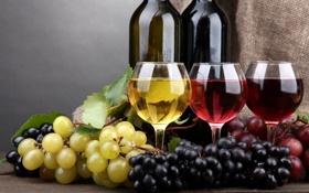 Обои красное, вино, виноград, бутылки, бокалы, белое, розовое