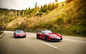 Обои 911, Porsche, Carrera 4, порше, Coupe, GTS, 991