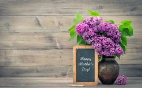 Обои цветы, букет, ваза, сирень