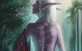 Картинка девушка, эльф, драконы, тату, арт, ткань, эльфийка