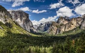 Картинка лес, пейзаж, горы, природа, панорама, Grand, California