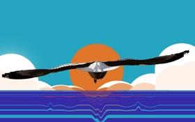 Картинка море, солнце, птица, крылья, вектор