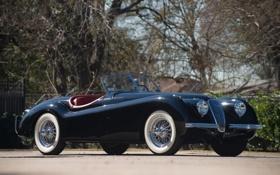 Обои Roadster, ягуар, родстер, классика, jaguar, XK120, 1949–54