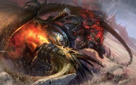 Обои скалы, огонь, дракон, воин, арт, гигант, битва