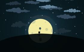 Обои небо, кот, звезды, ночь, животное, луна, шар