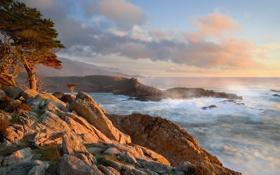 Картинка берег, прибой, калифорния